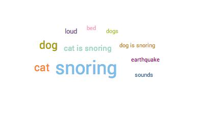 Insomnia Gründe Haustiere